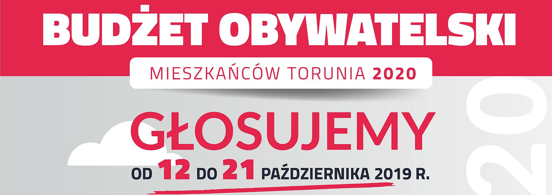 Budżet obywatelski Torunia 2020, głosowanie
