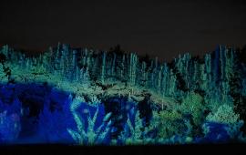Na zdjęciu widać mapping wyświetlany na lesie