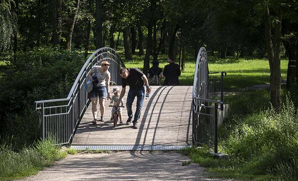 mostek w parku na Bydgoskim Przedmieściu