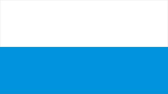Flaga Miasta Torunia
