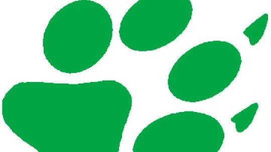 Logo Festiwalu Sztuka Natury