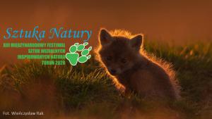 Plakat informujący o festiwalu Sztuka Natury - mały lis siedzi wśród traw, w tle zachodzące słońce