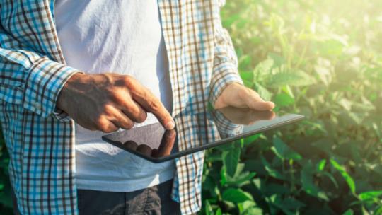 Na zdjęciu widać dłonie przesuwające zawartość wyświetloną na monitorze tabletu, w tle widac zielone pole