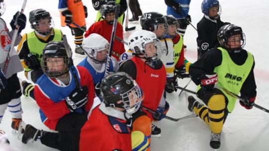 Na zdjęciu widać młoych hokeistów stojących w grupie na lodzie