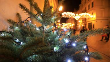 Gałązka świerku przybrana lampkami choinkowymi, w tle widać iluminację świąteczną na ul. Szerokiej