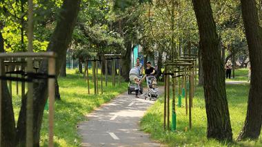 alejka w parku osiedlowym Na Skarpie, fot. Sławomir Kowalski