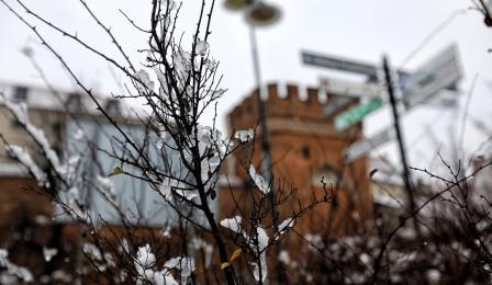 Ośnieżone krzewy na Bulwarze Filadelfijskim w Toruniu, fot. Sławomir Kowalski