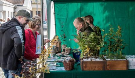 Na zdjęciu: proekologiczne zabawy na Rynku Nowomiejskim